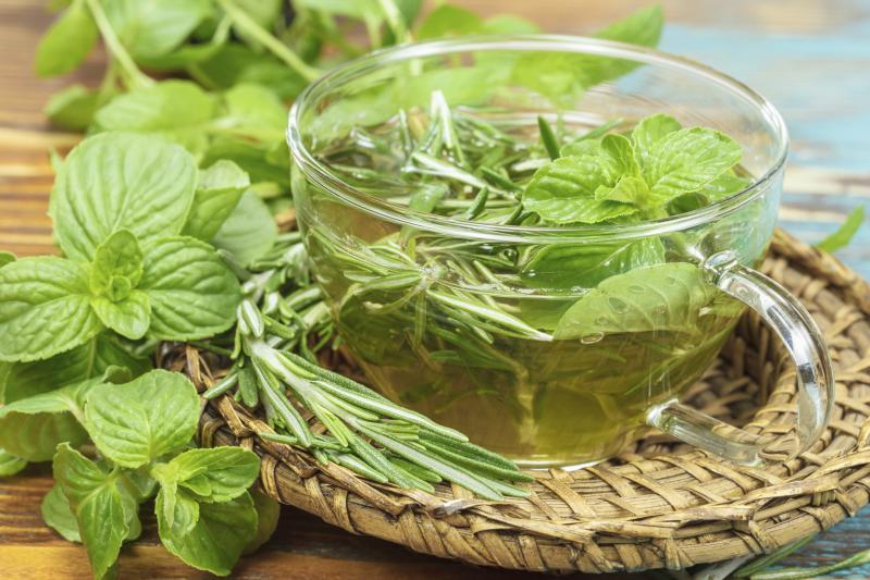 Hausmittel für schöne Pflanzen: Kräuter und Blumen mit Tee gießen
