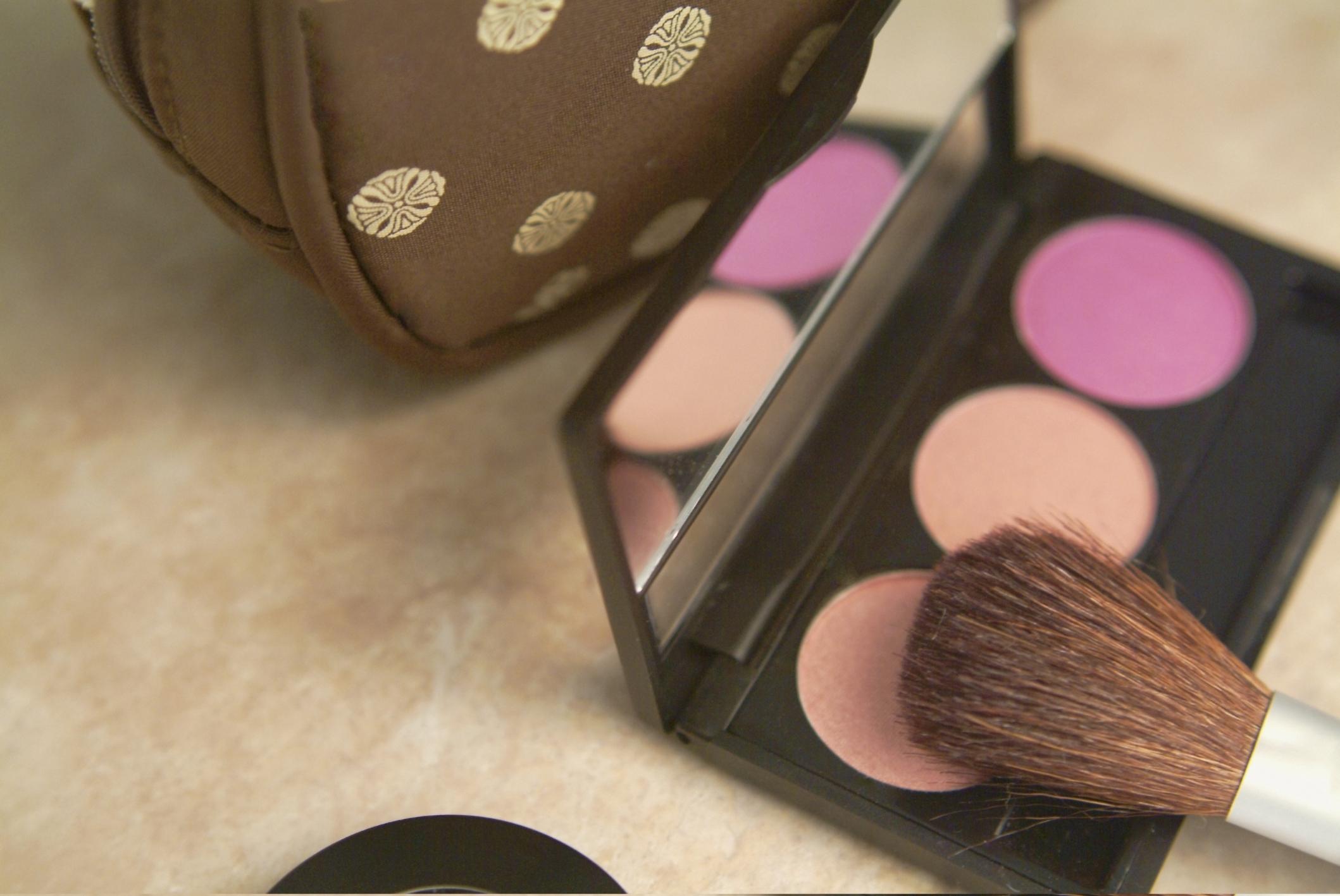 Make-up Pinsel und Puder