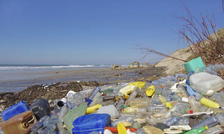 Weg mit dem Plastik: Stattdessen Natur pur