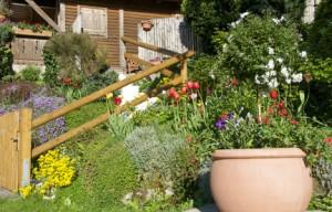 Gartenpflege für Vielbeschäftigte – schnell umsetzbare Tipps zum Erhalt des Grüns