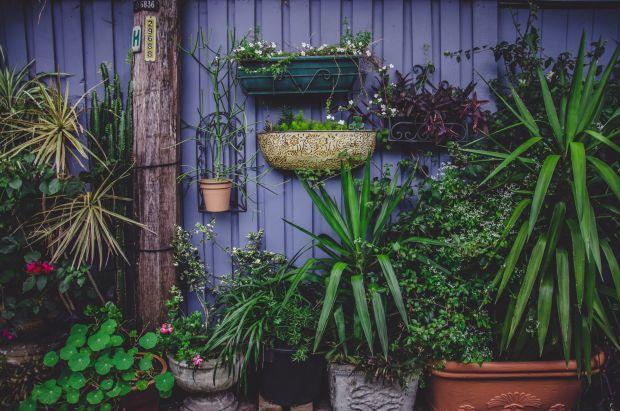 Alte Blumentöpfe ruckzuck neu gestalten: Eine kleine Ideen-Sammlung